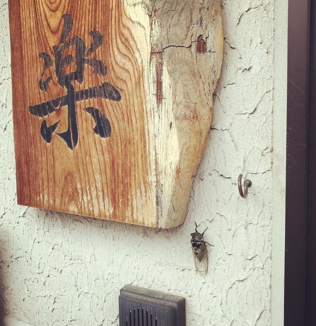 和風創作懐石料理 喜楽の画像4